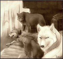 City of Howls by rainhowlspl