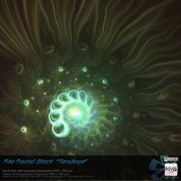 Free Fractal Stock - Paradoxon by Hexe78