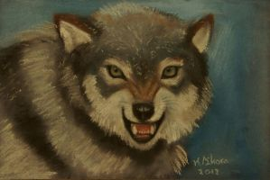 Wolf by BettyNobs