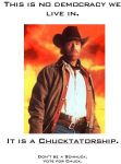 Vote Chuck Norris 5 by MjolnirIF