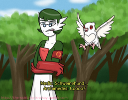 TF2/Pokemon Crossover Garde-Medic and Archi-Pidove by The-Clockwork-Crow