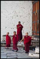Young monks - Rinpung Dzong by Dominion-Photography