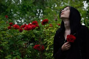 A Rose On The Grave Of Love by ParenthesisX
