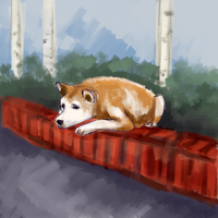 Hachiko by nikkeae