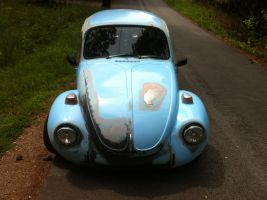 Pic of my bug 7 by NekoVWMike
