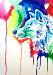 Rainbow Wolf 5 by Lucky978