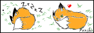 Cute sleeping foxes by Foxshu