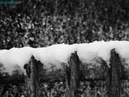 snow on the fence by IamNasher