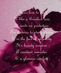 A Thornless Rose by Lovelyruthie