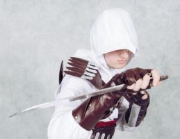 Assassin's Creed Cosplay 2.1 by Ectheo8