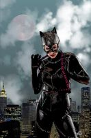 Catwoman: Bad Moon Rising by pypeworks