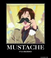 Romano Demotivational Poster by invadersharie
