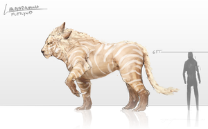 Man Lion Comparison by SteveGibson