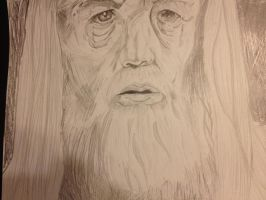 Gandalf The Grey by hellsreaper93
