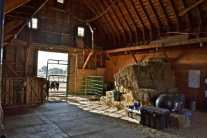 Barn Life by 2StrokeChic