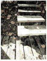 Stairs to the fall by SineLuce