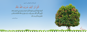 Surat Ibrahim Aya 24 and 25 - FB Cover by LMA-Design