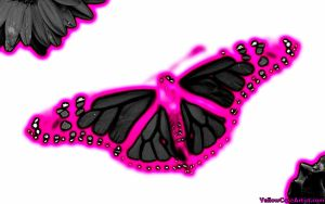 Pink Butterfly by yellowcaseartist