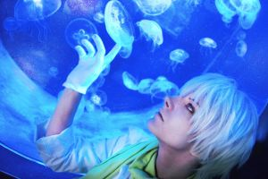 Jellyfish dreams [DMMD Clear] by Milukyo