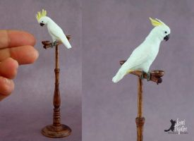 Miniature Cockatoo sculptures by Pajutee