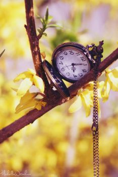 Ticking yellow by MicWits101