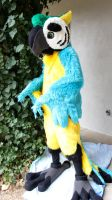 Blue Macaw by Antiquated-Inquirer