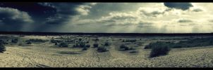 Wastelands by noistromo