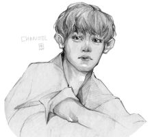 Chanyeol by Cristal03