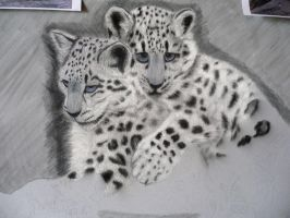 WIP Snow Leopards by Sassis