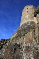 Fougeres by Azagh