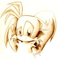 Tails Sketch by goldhedgehog