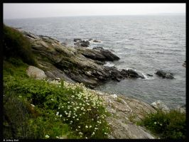 Jamestown RI. Beavertail Park by JBail