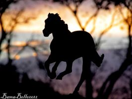 Secretariat  Silhouette by BamaBelle2012