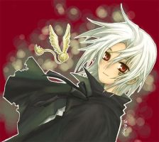 D Gray-man by Brownkun