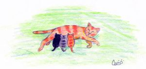 Squirrelflight and Kits by lilyzoe07
