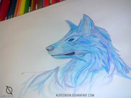 Wolf - watercolorpencils by AerisOrion