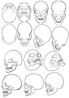 Skull study by Pharion