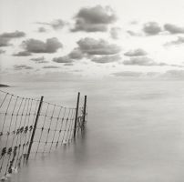 Fence in water by giedriusvarnas