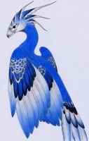 Fenix Azul Mexicano by verreaux