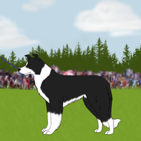 Riley at the World Dog Show by Alcemistnv