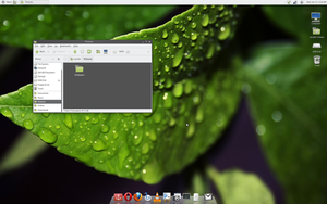 "Linux Mint 11 ""Katya"" Screenie by vanessabanessa89"