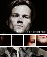 Winchester by Mrs-Reed