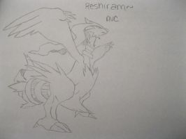 Reshiram by animeVampire-cat