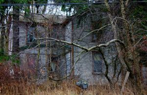 House in the Woods by GlassHouse-1