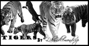 Tiger Brush Pack by LiTdesign