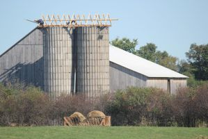 Amish Building Silo Roof (5) by Lectrichead
