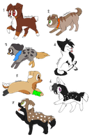 :5points each: OPEN by Zoesadopts4u