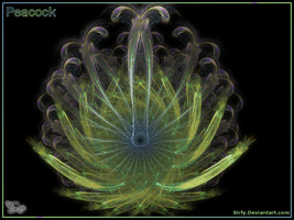 Peacock --full view-- by Sirfy