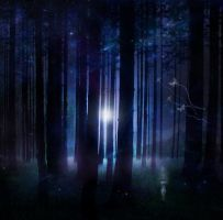 Mystic Woods by EvenDeathLies
