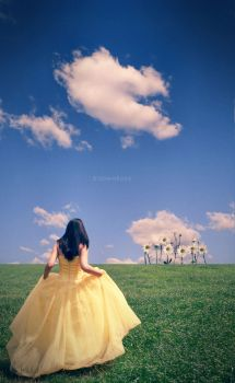 once upon a time by Blo0wm0on
